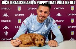 Puppy memes